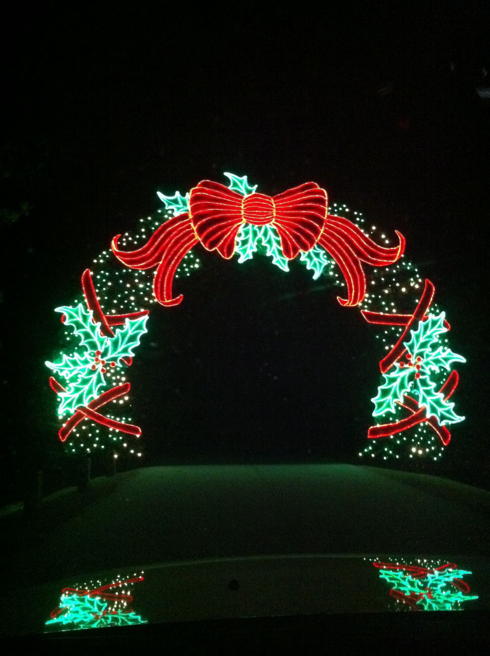 Christmas Lights Galore And Win A 75 Sears Gift Card Southern Bite