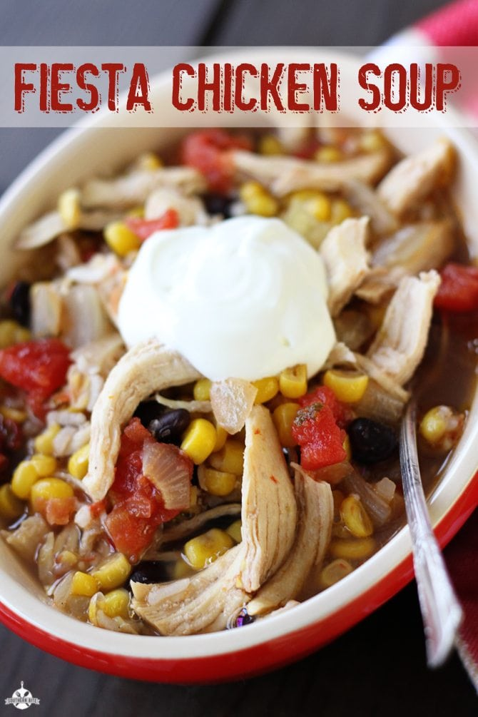 Bowl of Fiesta Chicken Soup