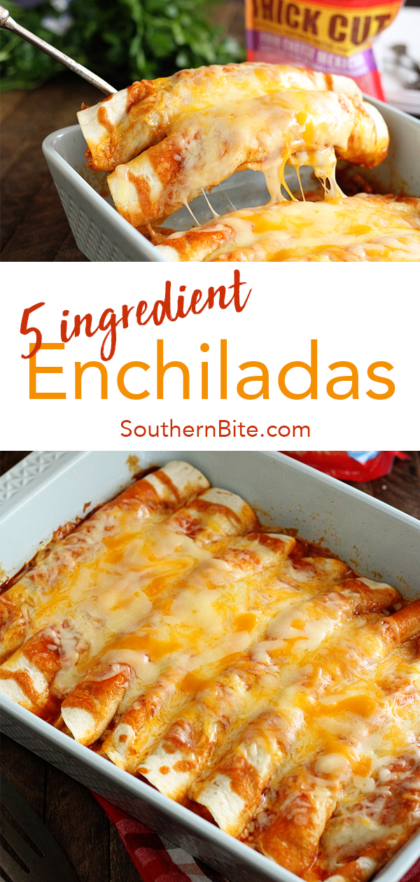 These quick and easy enchiladas only call for 5 ingredients and are ready in no time! It's the perfect recipe for a busy weeknight! #recipe #southernbite #enchiladas #easy #quick #weeknight