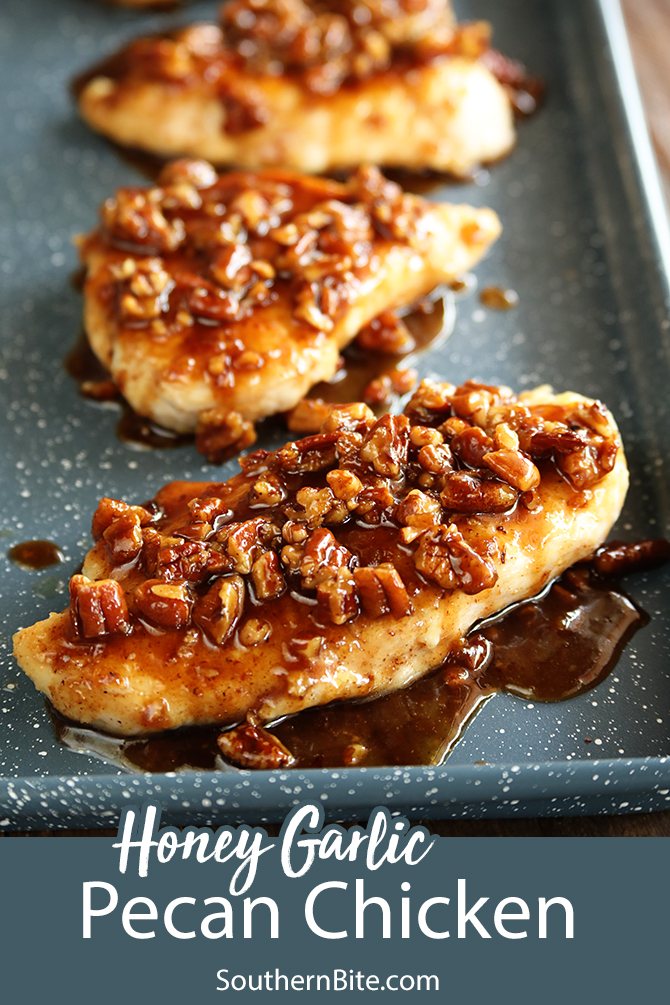 This recipe for Honey Garlic Pecan Chicken is impressive, but so easy. It's perfect for a busy weeknight but fancy enough for company.