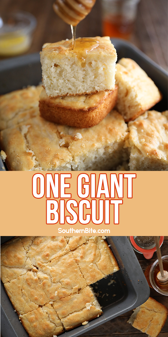 One Giant Biscuit baked in a baking dish