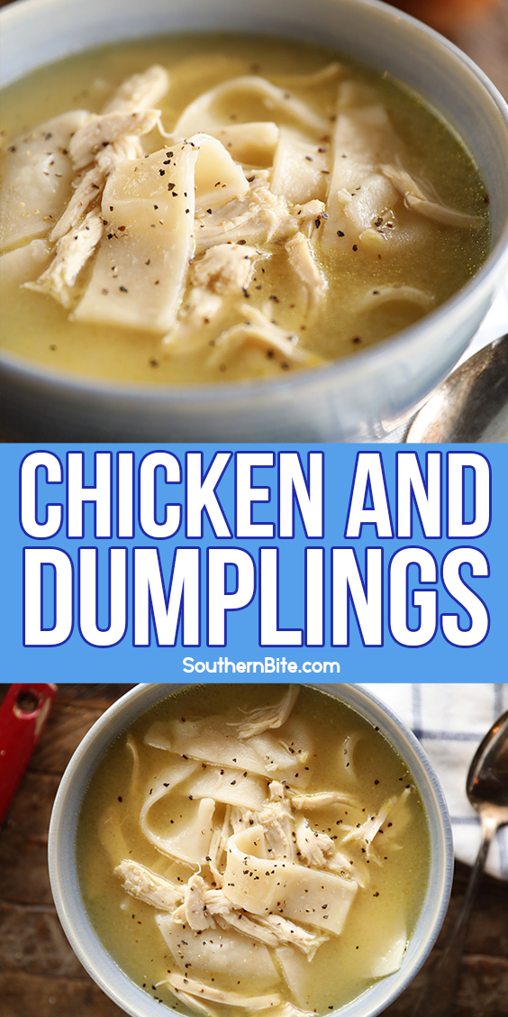 Bowl of Southern Chicken and Dumplings